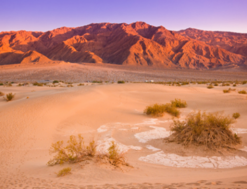 California's Death Valley Extreme Summer Heat Could Break Its 1913 Record as The Hottest Place on Earth